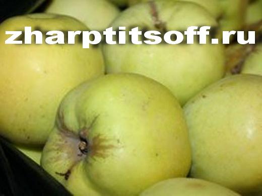 Фарш яблочный сахарный песок, начиняем гуся или утку